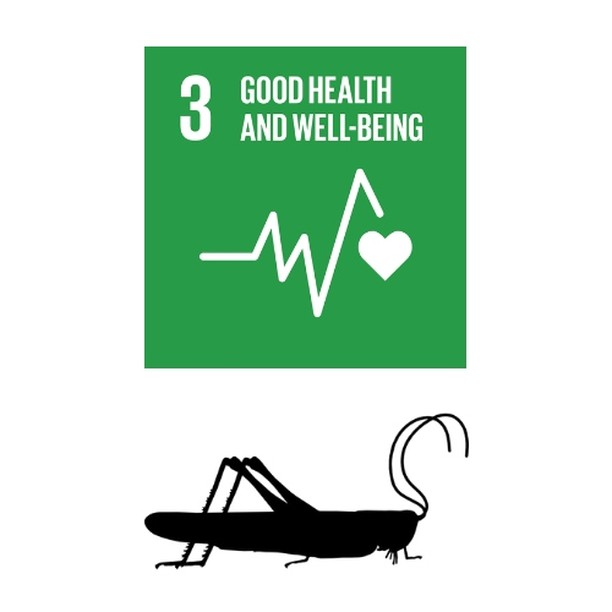 HEALTH BENEFIT FROM EATING BUGS!  The UN Sustainable Development Goal #3 aims for ensuring healthy lives and promoting well-being for all at all ages.  Edible insects grown in your Hive by Livin Farms can definitely contribute to your health by delivering valuable nutrients like protein, unsaturated fatty acids and containing vitamins, such as A, B or B12. On top of that you're adding mineral nutrients like iron, potassium, zinc and calcium to your diet.  #SDGweek #UNSDGS #goodhealth
