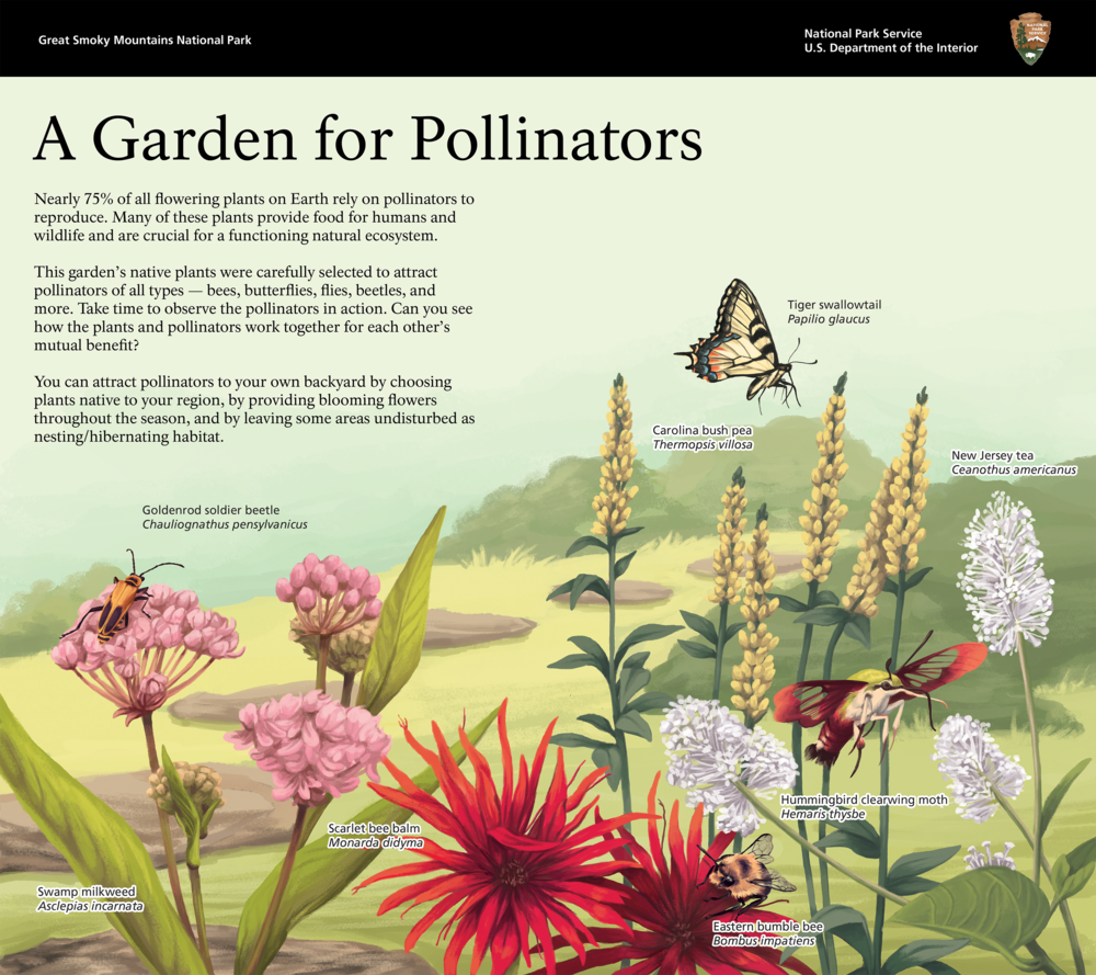 Pollinator Garden Small.png