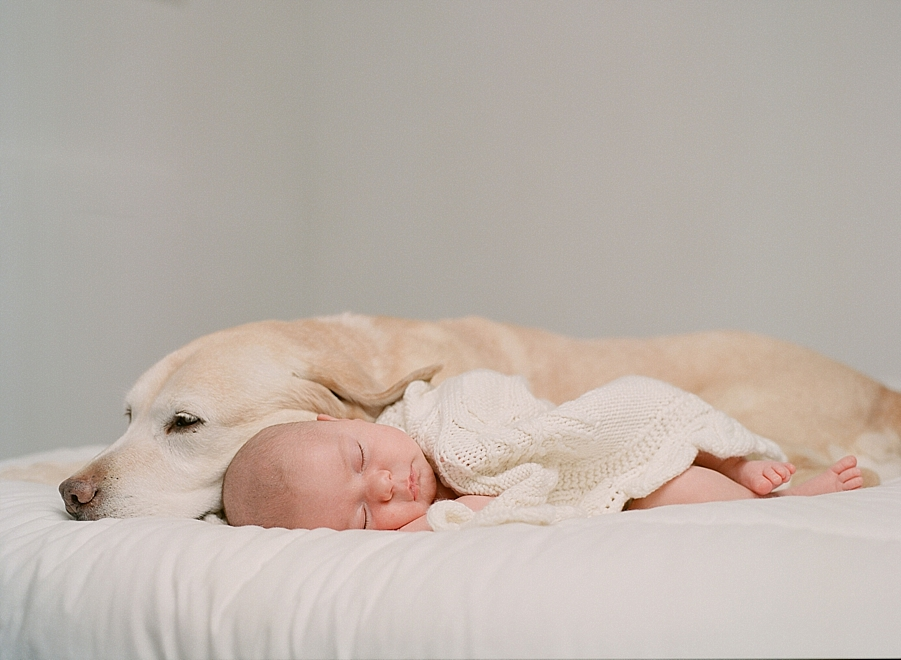 Newborn photographer Sandra Coan | Newborns on film | Film photography | Studio strobes and film | newborn photography