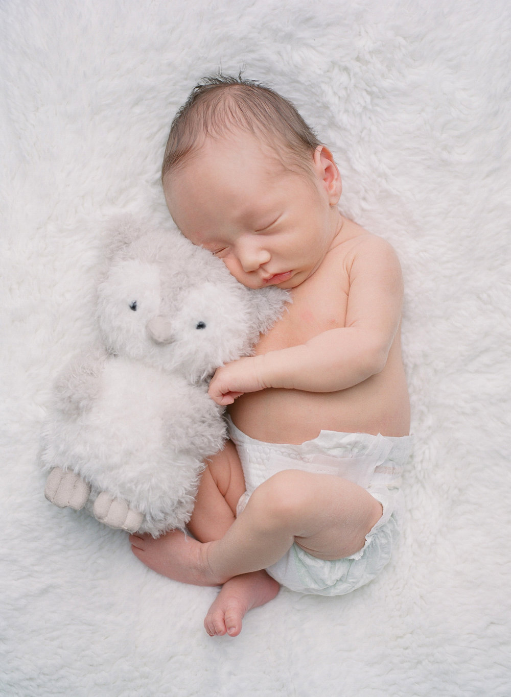 sandra coan seattle newborn baby photography newborn with a japanese stuffed animal toy owl
