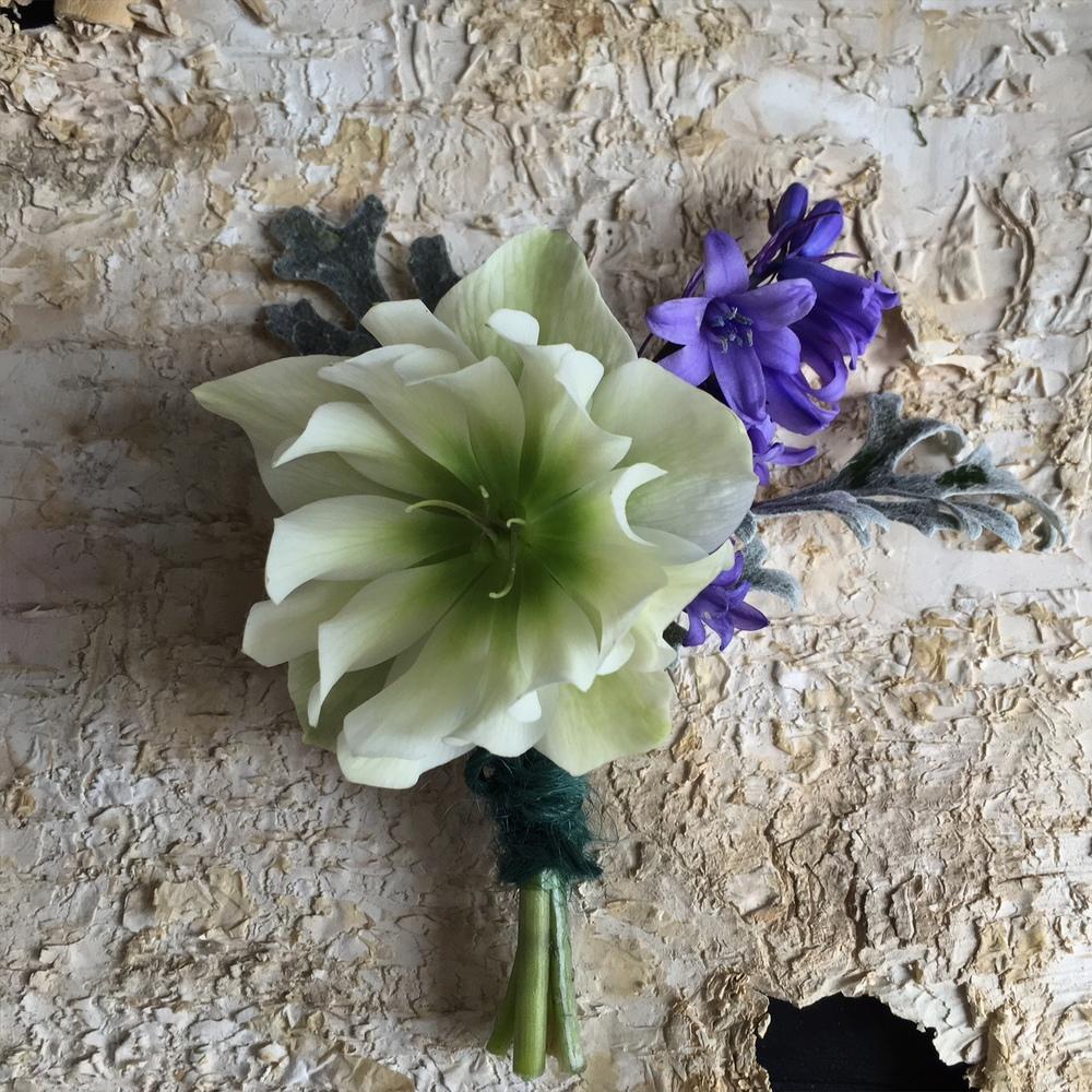 hellebore buttonhole bloomologie