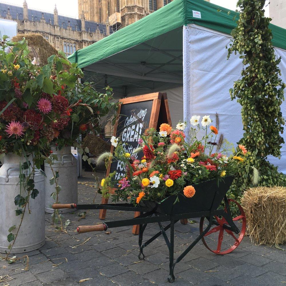 Bloomologie wheelbarrow flowers