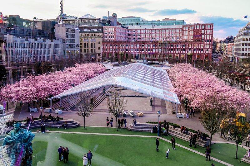 Вид на парк с сакурами со смотровой площадкиCity Skyliner