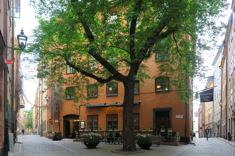 Guided Tours in Stockholm Stockholm Mania 3.jpg