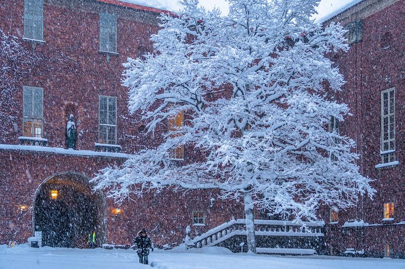 4 ноября 2016 года на Стокгольм внезапно обрушился снегопад. Бывает и так!