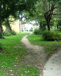 Desire_path[1]