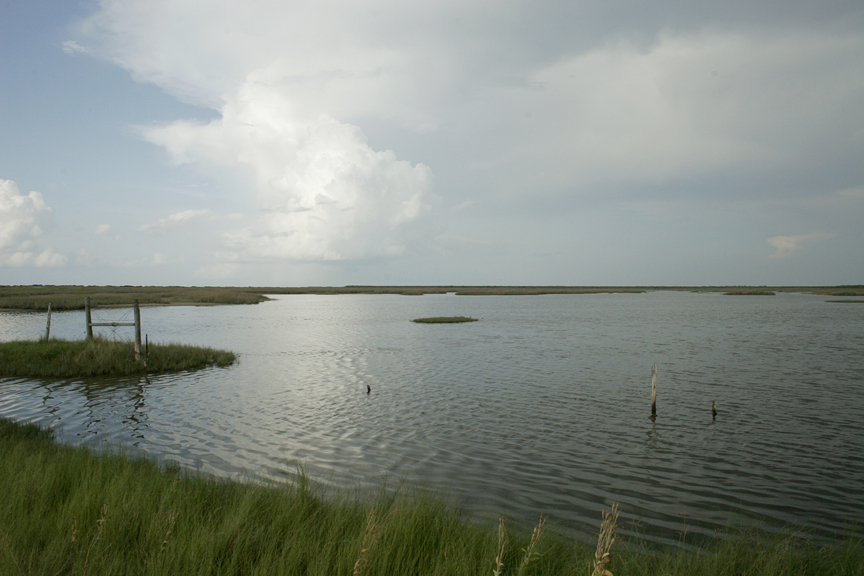 Galveston Bay Habitat Acquisition and Easements Initiative    Restoring habitat (coastal wetlands, bottomlands and estuaries) from multiple counties leading into the Bay and Gulf Coast