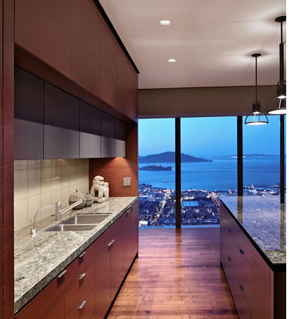 Houzz empty nester hi-rise, Russian Hill-kitchen