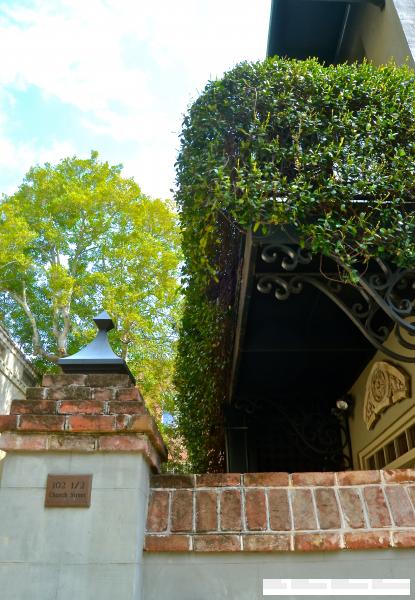 Charleston ivy covered balcony