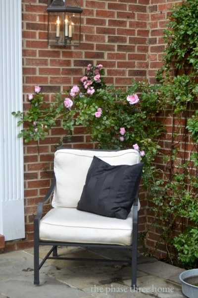 210 front porch chair w pink rose