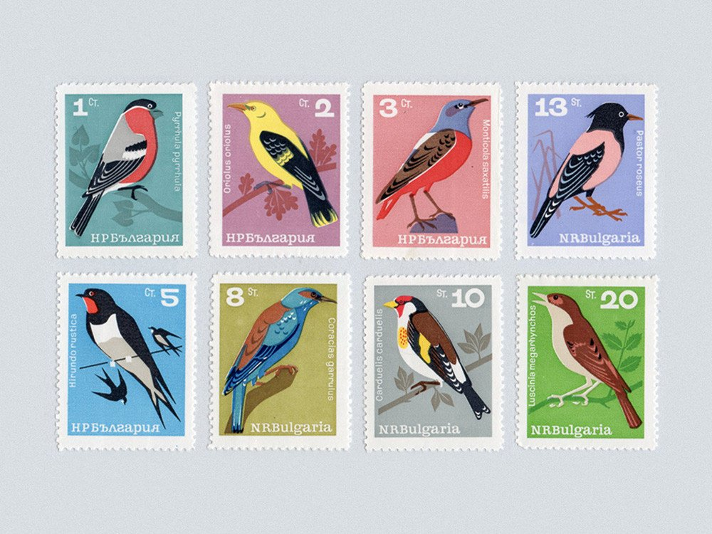 Songbird Stamp Set via  Present & Correct