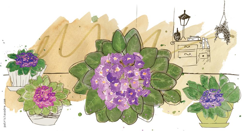 casa-e-jardim-maio-patsodre5.jpg