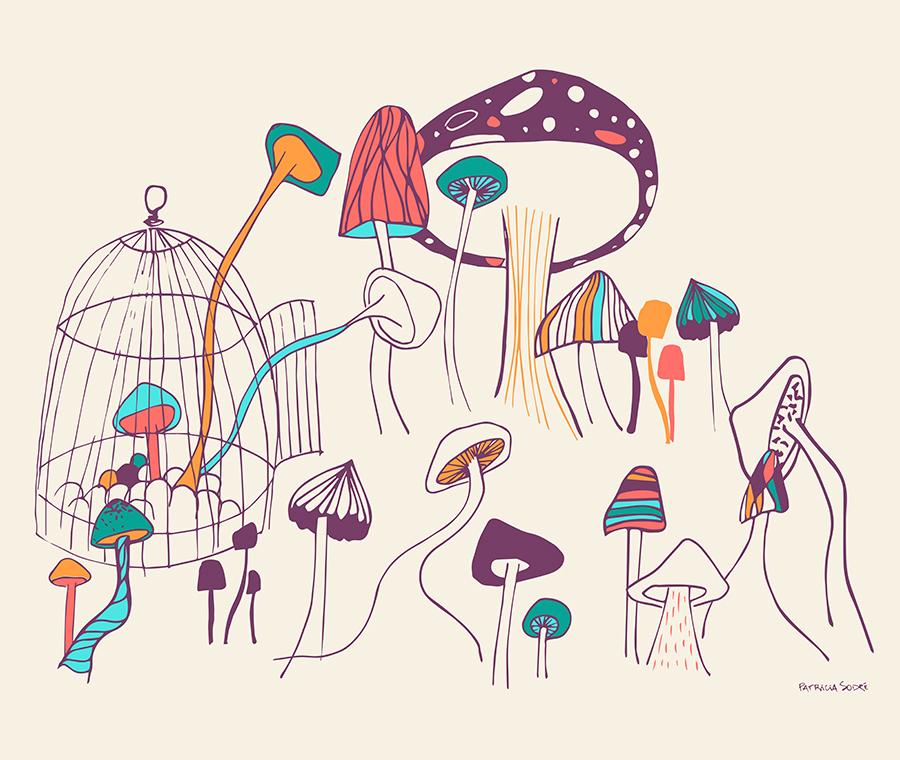 mushroom-meeting-patriciasodre.jpg