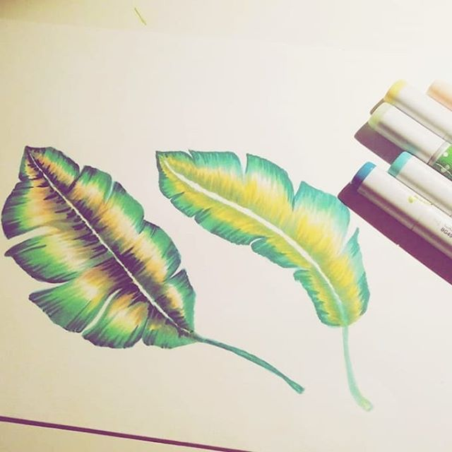 More drawings with Copics 💚 #patternstudio . . . . . . #nozesstudio #creativestudio #copic #copiccolorpalette #drawingwithcopics #patterndesign #tropicalmood #tropicalpattern #patriciasodre @copic_portugal #copicart #copicartist #copicwork