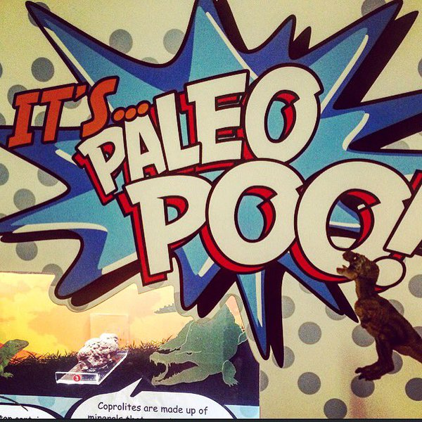 paleopoo