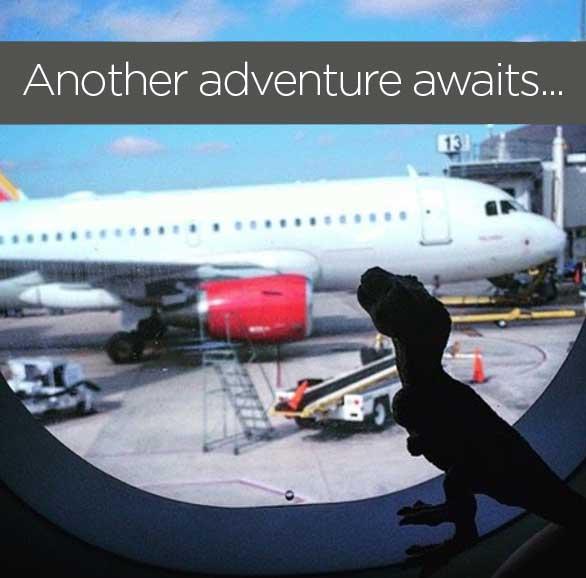 Tim-On-A-Plane