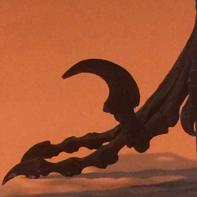 Deinonychus foot, Houston Museum of Natural Science.