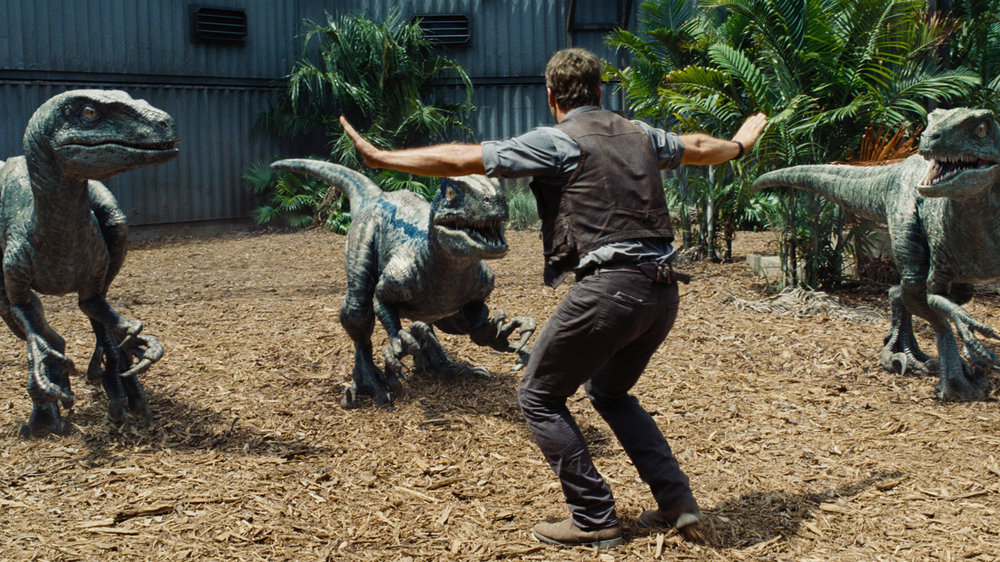 Hollywood velociraptors, not chicken-sized. (Courtesy Universal Pictures.)