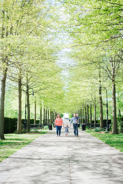 Vander Veer park in Davenport