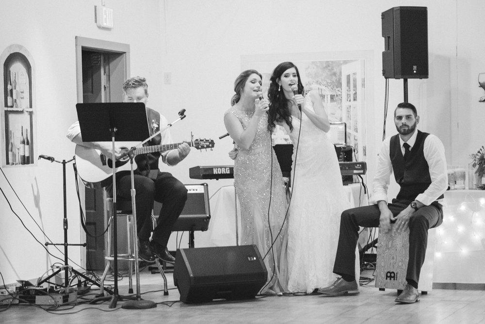 iowa wedding photographer - reception - wisconsin wedding-30.jpg