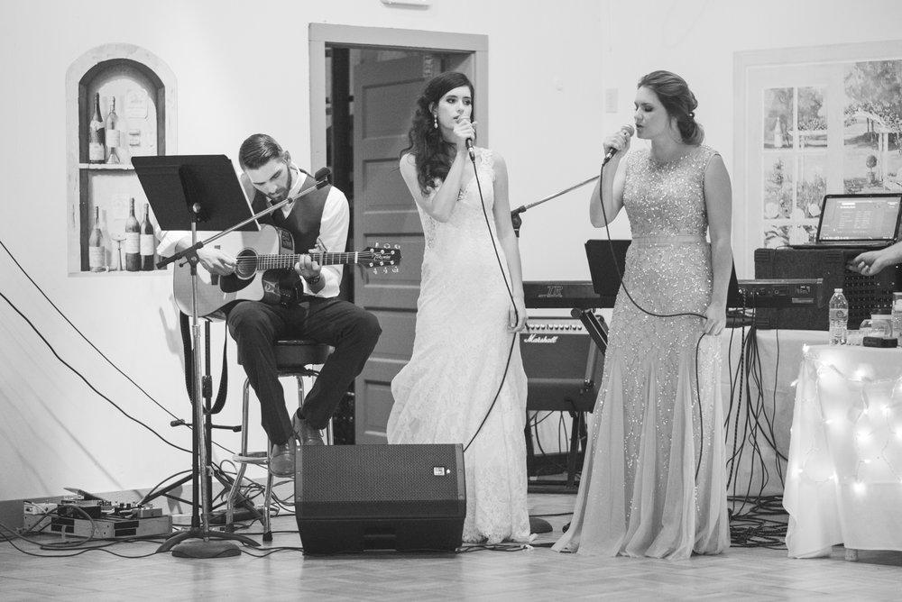 iowa wedding photographer - reception - wisconsin wedding-29.jpg