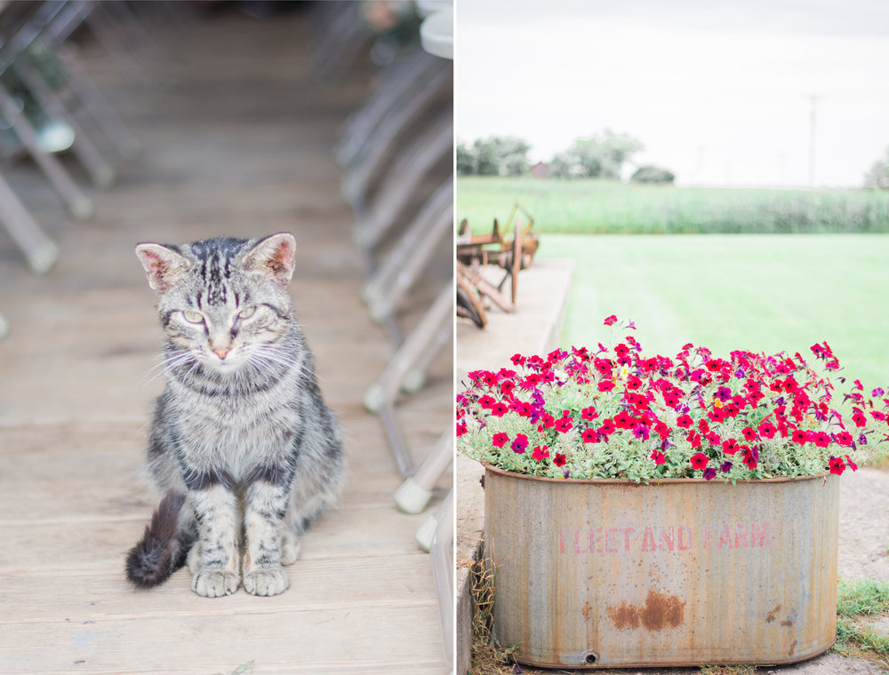 5 iowa wedding photographer - country barn wedding13.jpg