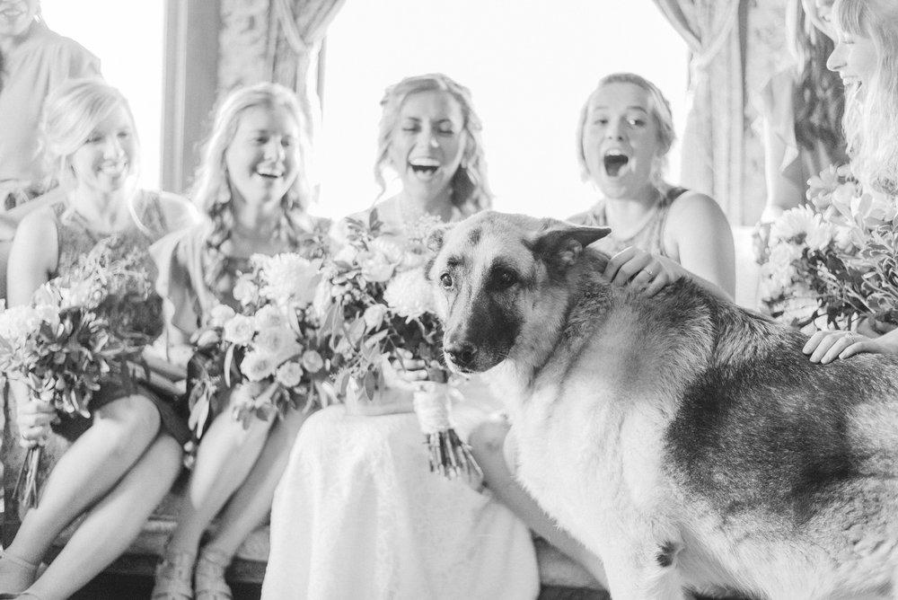 7 iowa wedding photographer - country barn wedding5.jpg
