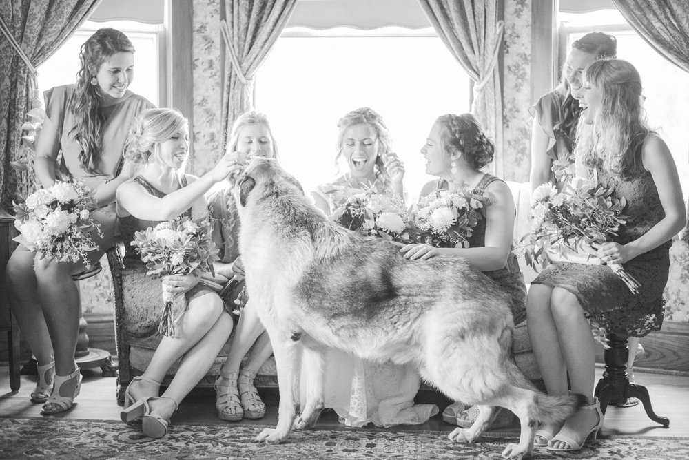 7 iowa wedding photographer - country barn wedding6.jpg