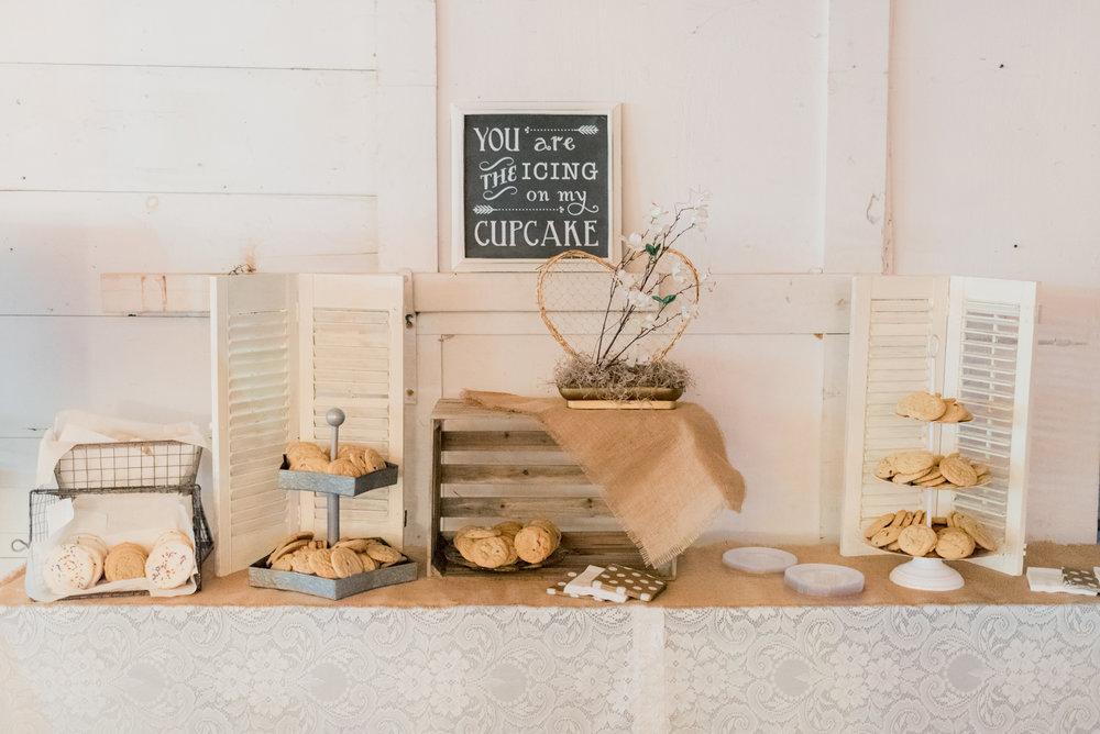 iowa wedding photographer - reception-5.jpg