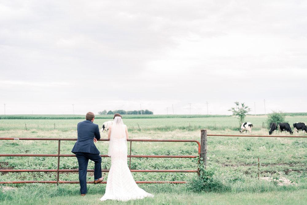 iowa wedding photographer - destination wedding photographer_-136.jpg