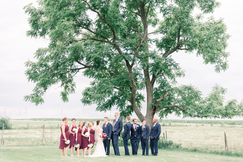 iowa wedding photographer - destination wedding photographer_-119.jpg