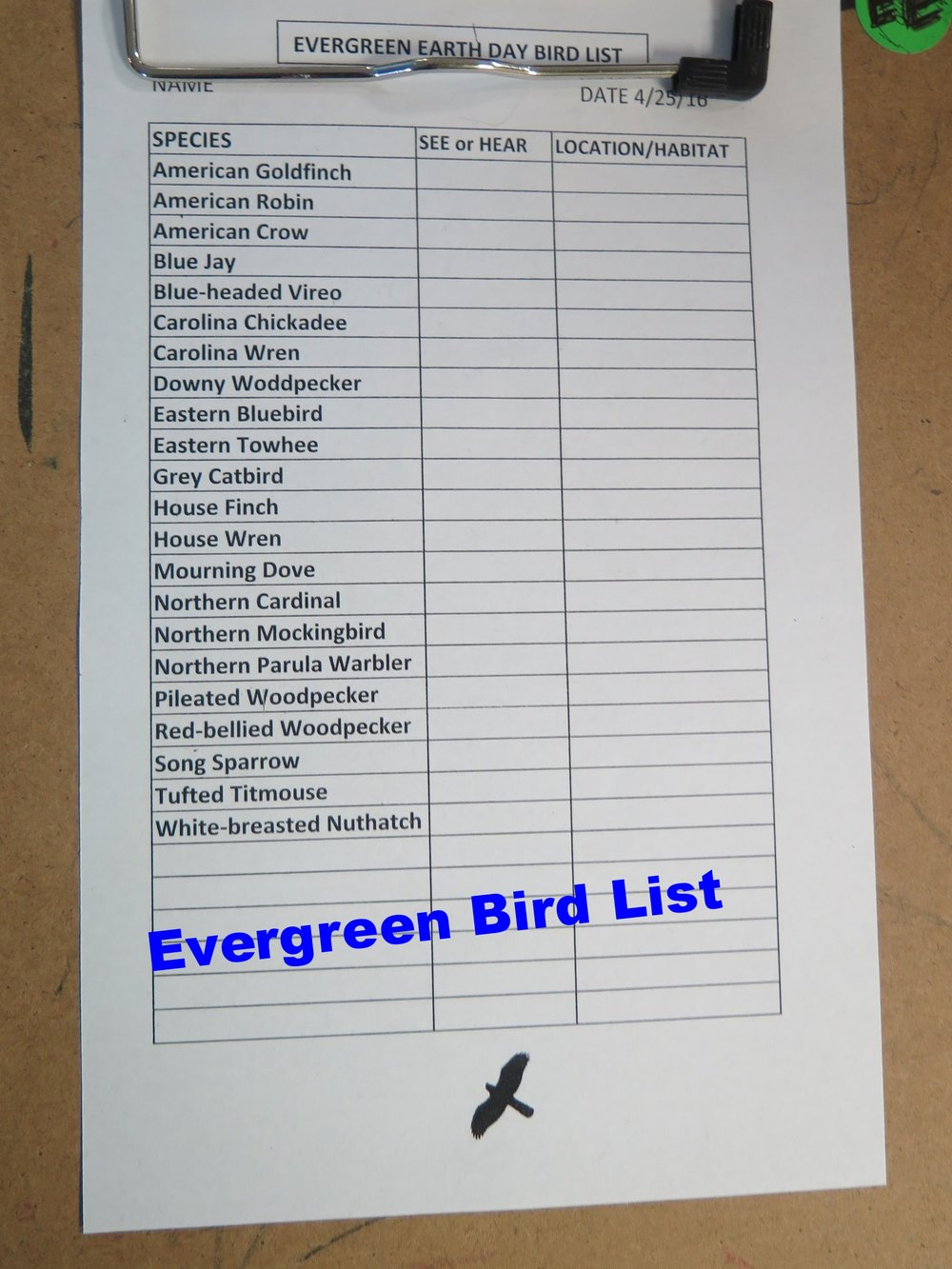 Over the years, Mark has helped us to identify the most common bird species we may see on or around the Evergreen campus.  Students become familiar with this list in fourth grade, then use it time and time again as they continue to participate in the GBBC and Earth Day Bird Count activities.