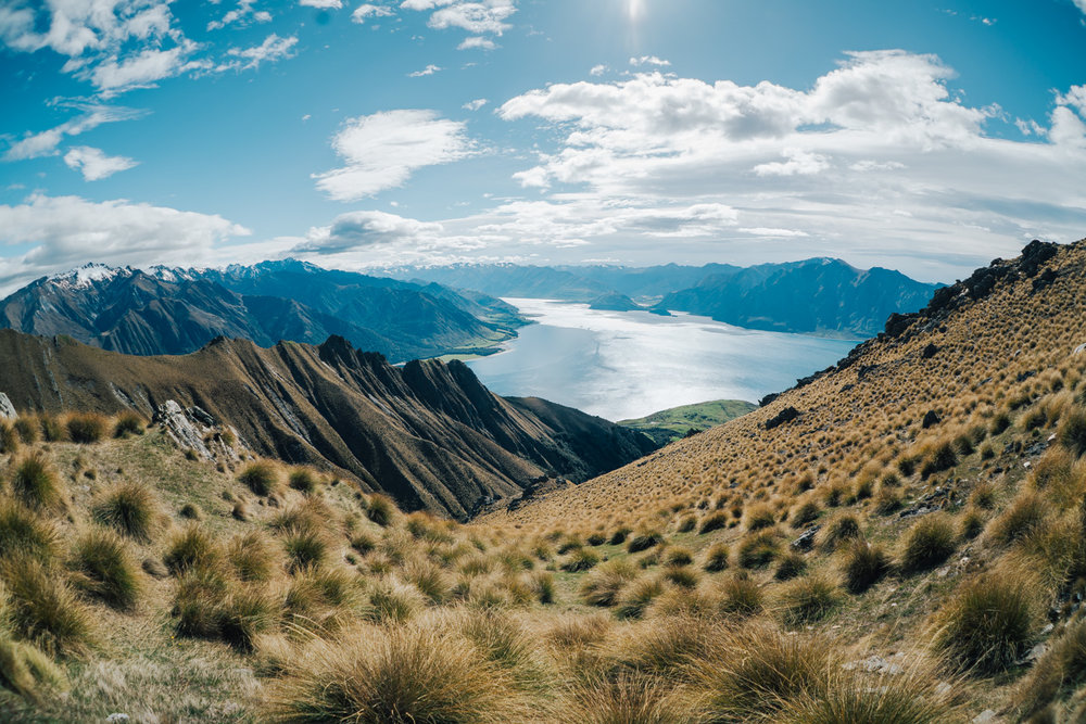 Disconnecting in NZ last year. 12 days of hardly any screen time. Just a whole lot of oxygen, hiking & dreaming. #soulfood
