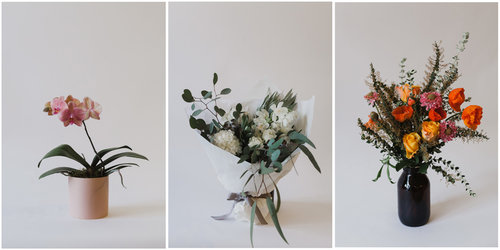 Flower-page-headder.jpg