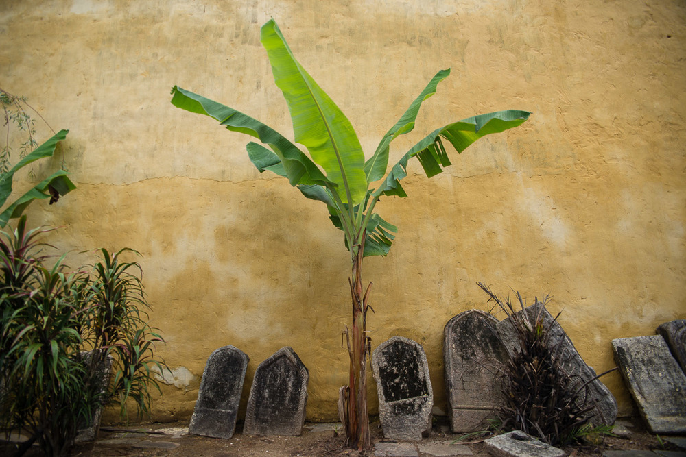 Gravestones from the Paradesi Cemetery are placed along the outside of the Paradesi Synagogue, constant reminders of a past that is quickly escaping.