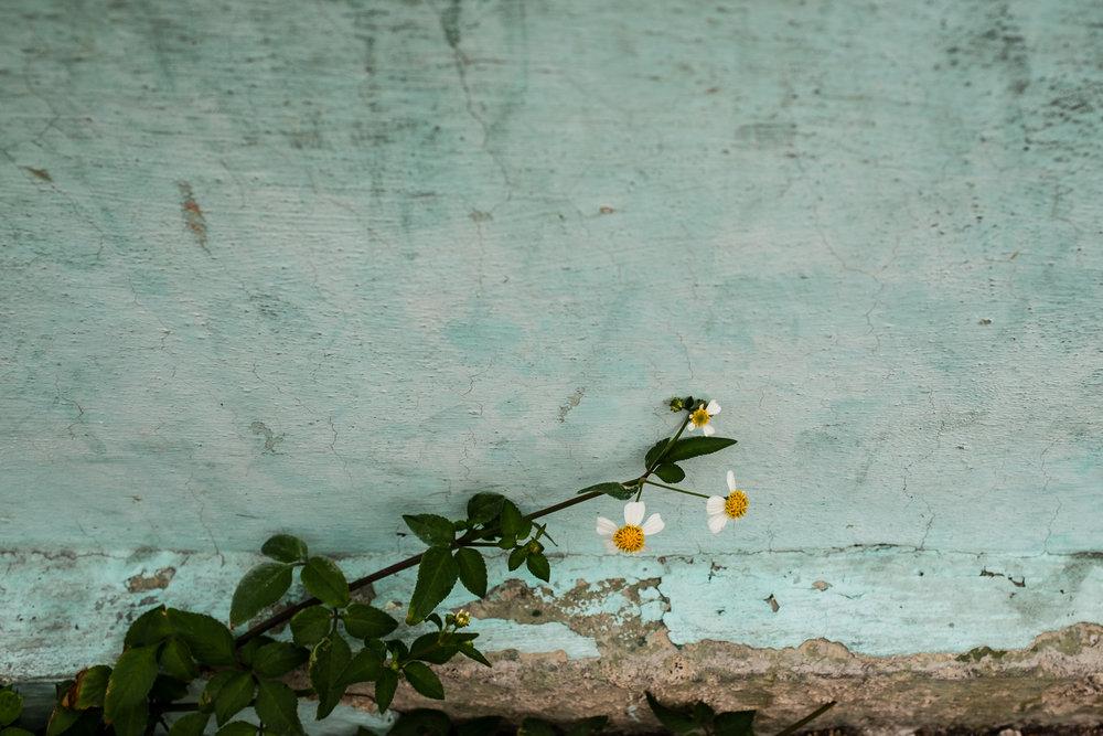 cuba_blog_AnnaClareSpelman_008.jpg