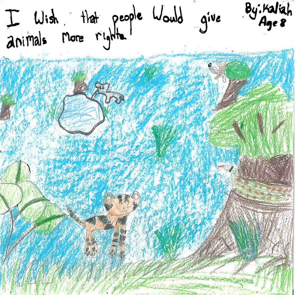 Animal rights wish by Kaliah age 8.