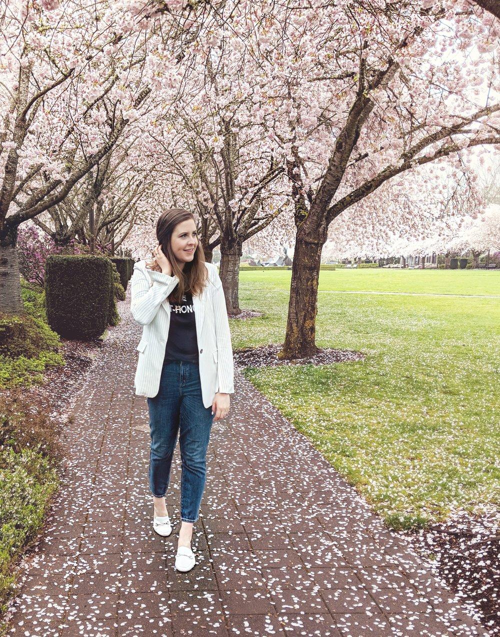 Cherry Blossoms Walking 2018