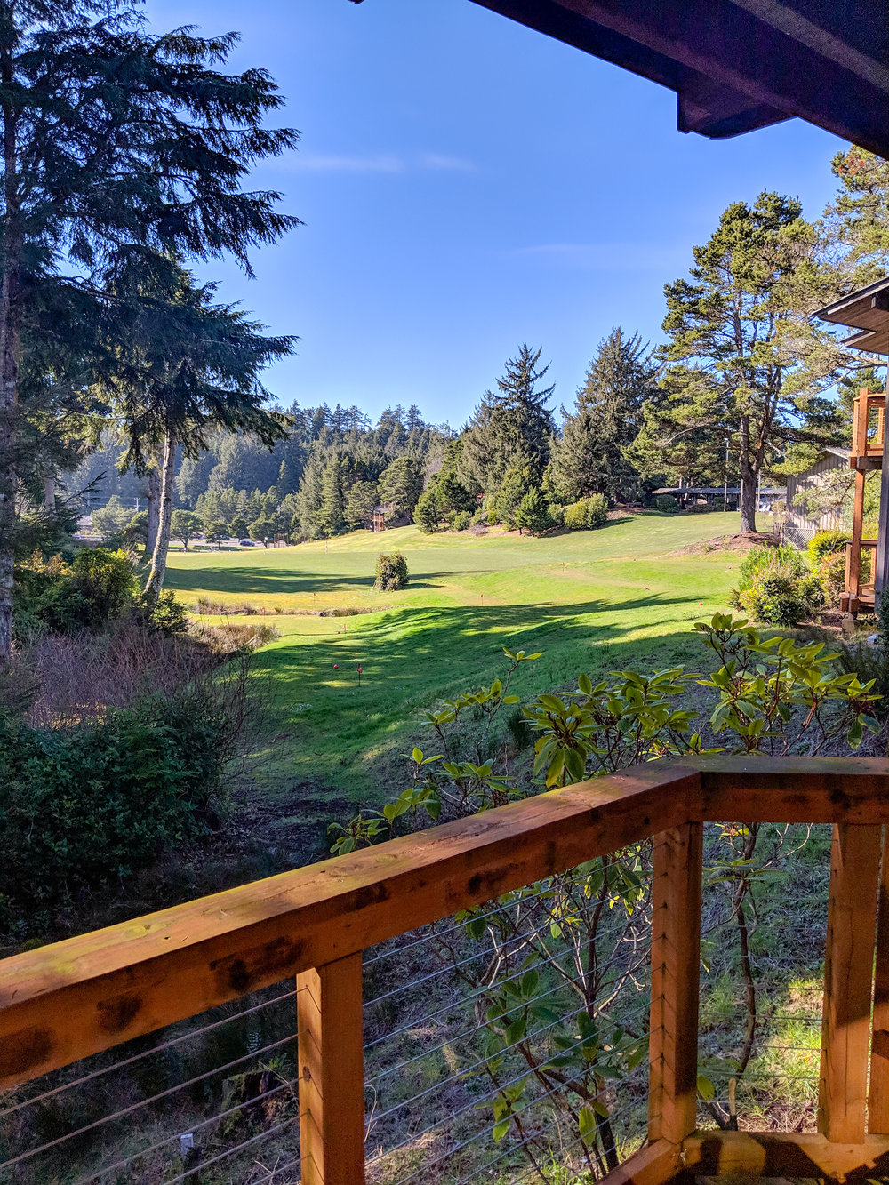 Salishan Resort Room View