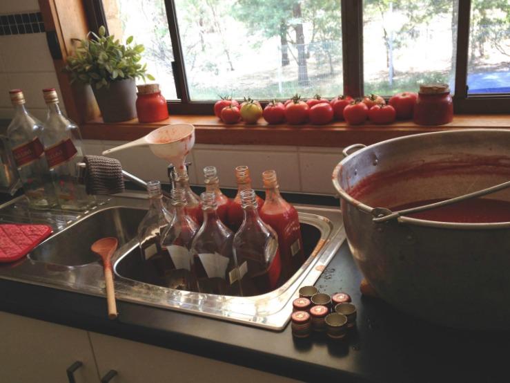 Tomato-Sauce-6.jpg