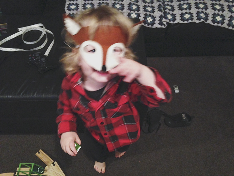 Foxmask.jpg