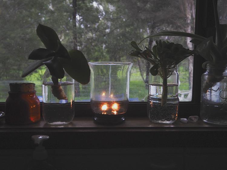 indiestitches.plants1.jpg