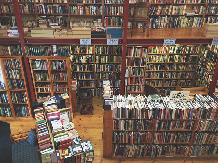 indiestithcesbooks.jpg