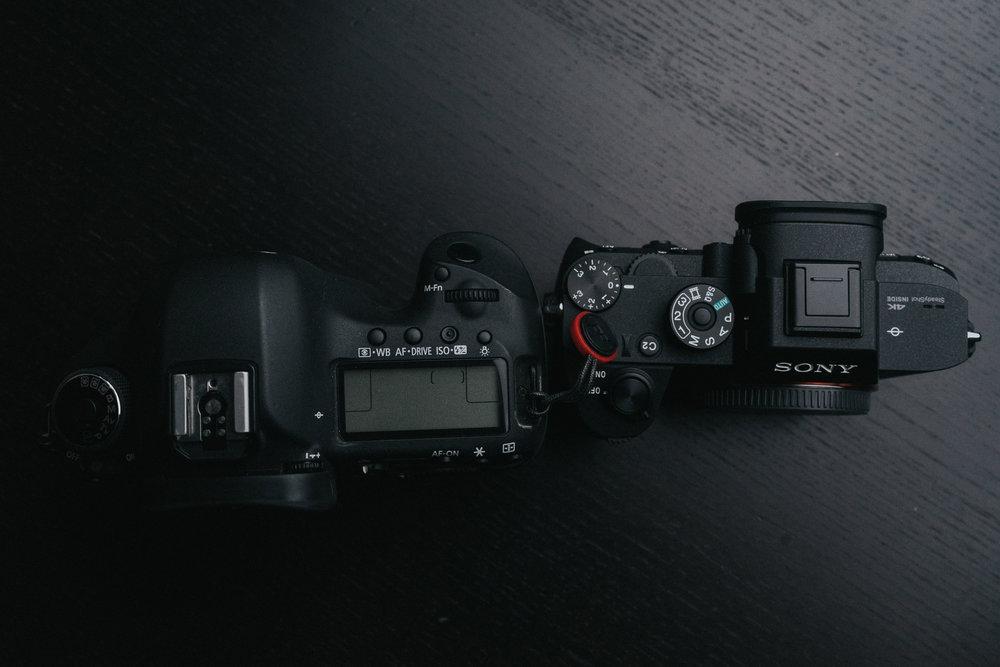 side-by-side-5.jpg