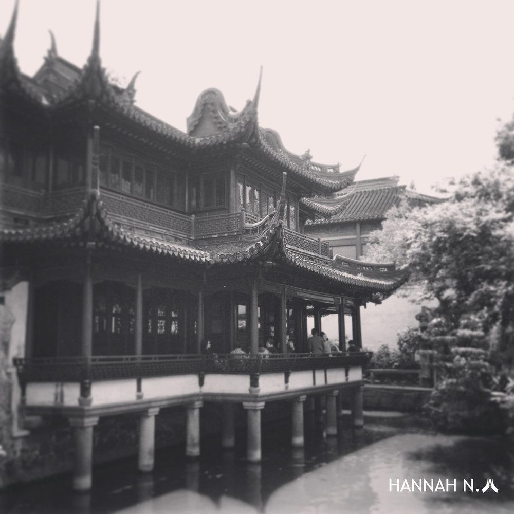 Hannah N 3.jpg