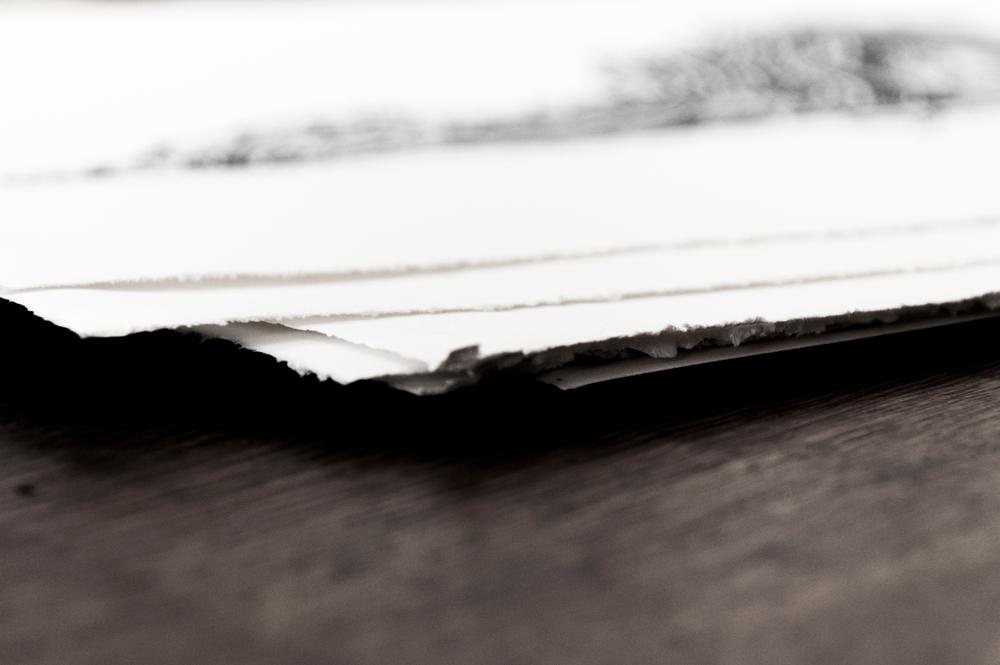 WoodcutPhotos-4.jpg
