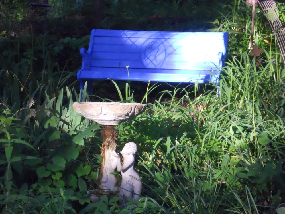 This is my mother's old garden bench now close to her old garden bird bath.