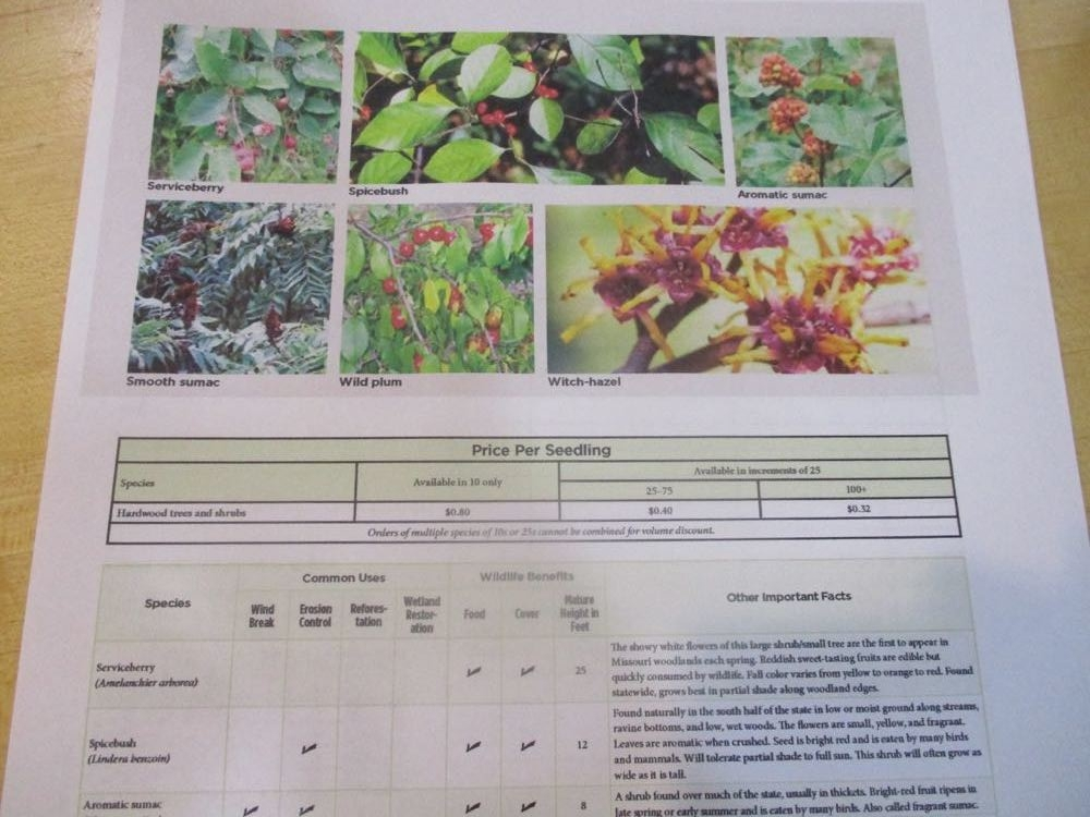 The George O. White Nursery catalog is a great free reference for how to plant the seedlings including an easy chart of various land uses.  (Photos by Charlotte Ekker Wiggins)