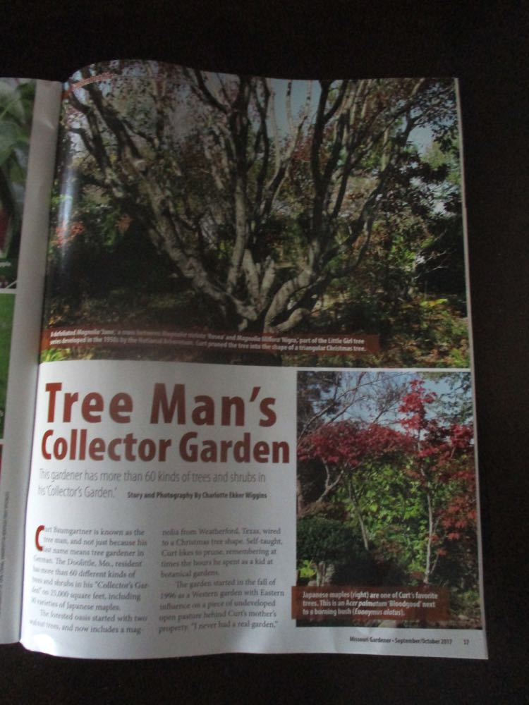 One of my feature articles in Missouri Gardener about a lovely forest garden in Newburg, Mo.