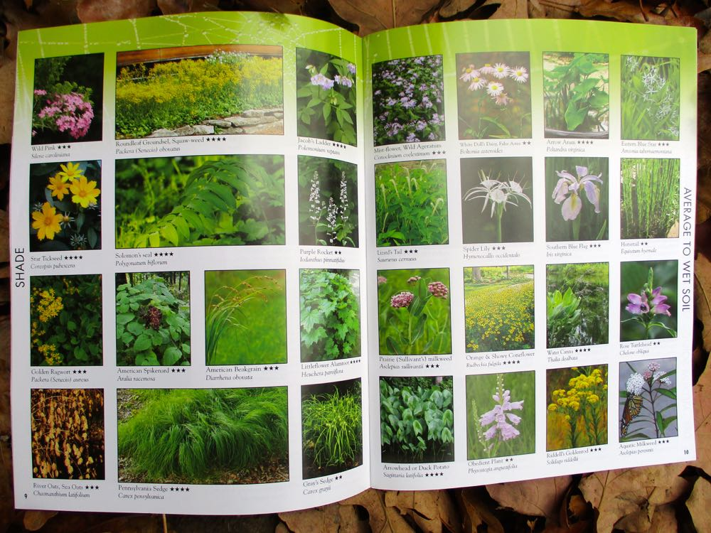 One of my favorite native plant catalogs to order from Missouri Wildflowers Nursery.